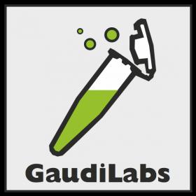 GaudiLabs2